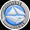Croisière Bleue, location de bateaux Caraïbes, Corse et Baléares